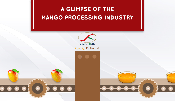 A Glimpse of The Mango Processing Industry