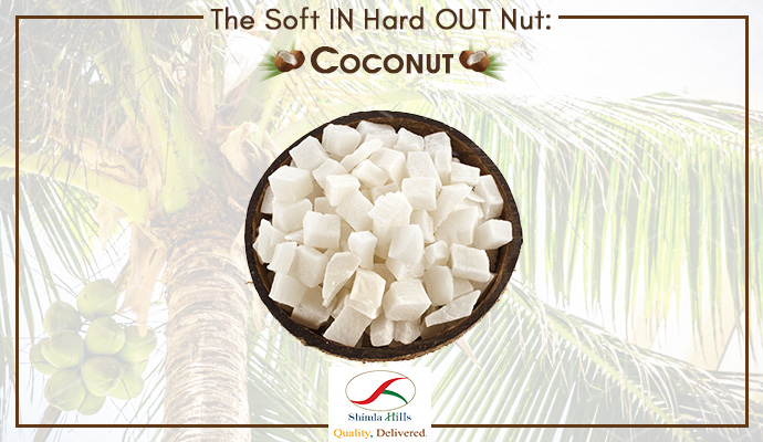 The Soft IN Hard OUT Nut: Coconut