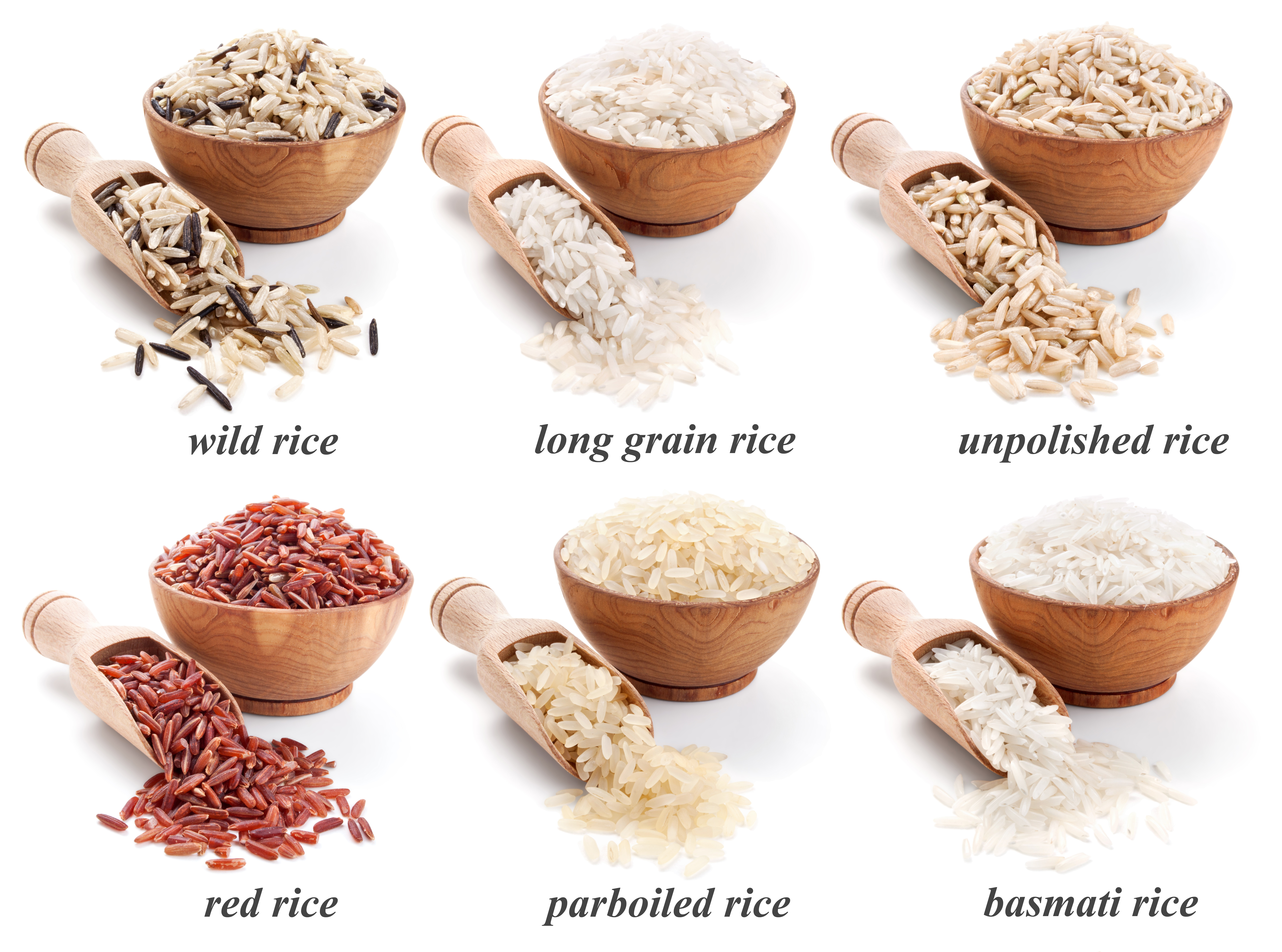 Rice Is Not Just A Staple Food, It's Passion Around The World