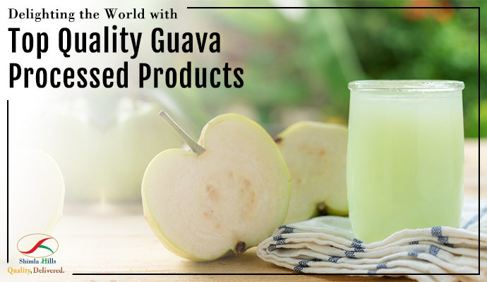 Delighting the World with Top Quality Guava Processed Products